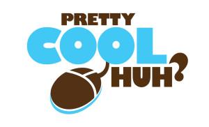 PrettyCoolHuh-Vertical-300x182